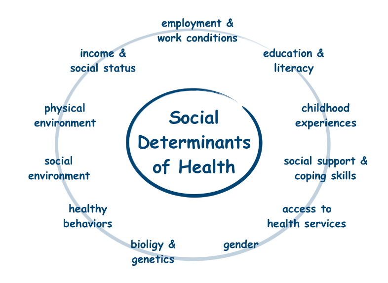 Graphic showing W.H.O.'s 12 social factors that affect health