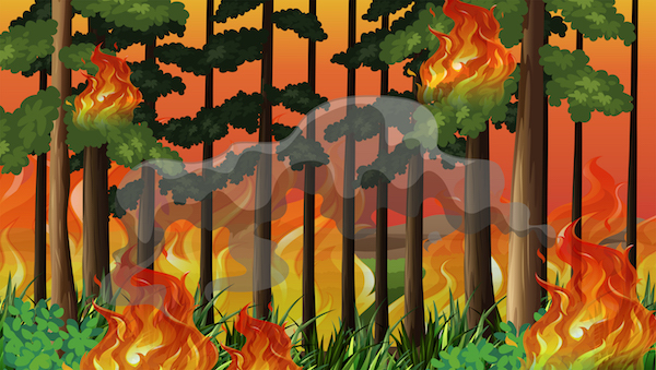 clip art image of fire in the woods