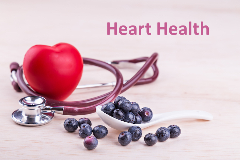 toy heart with stethescope and blueberries on a table